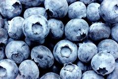Blueberries background Stock Photos