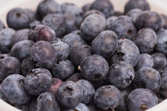 Blueberries background. Macro shot of blueberries up close Stock Image