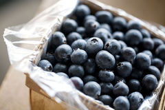 Blueberries in a basket royalty free stock photos
