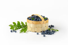 Blueberries in basket Stock Photography