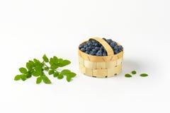 Blueberries in basket Stock Photos