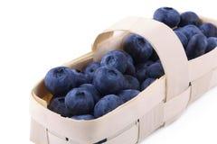 Blueberries Stock Photo