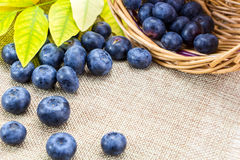 Blueberries in basket with leaves on linen cloth Royalty Free Stock Images
