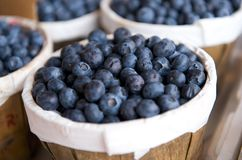 Blueberries in a basket on a market stall Royalty Free Stock Photography