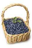 Blueberries in the basket  Royalty Free Stock Photos