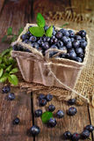 Blueberries in basket on a wooden surface. Stock Photos