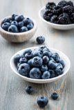 Blueberries and Blackberries Stock Images