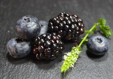 Blueberries and blackberries in black background Stock Images