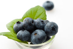 Blueberries. Bluberries on the white background Stock Images