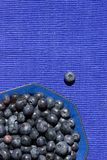 Blueberries in a Blue Bowl Stock Image