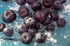 Blueberries of blue glass plate royalty free stock image