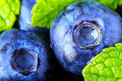 Blueberries. Blue blueberries and mint leaves on wooden table Stock Photos