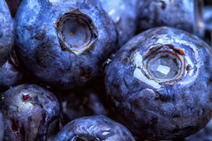 Blueberries. Blue blueberries and mint leaves on wooden table Royalty Free Stock Photography