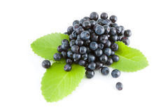 Blueberries. Blueberry, mint leaves, berry, freshness, ripe, on a white background Stock Photography