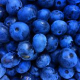 Blueberries. Bluest of blue blueberries Stock Photo