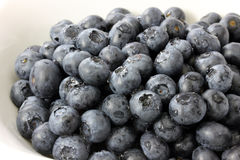 Blueberries in a Bowl. Closeup of Blueberries in a White Bowl stock photos