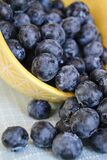 Blueberries in bowl Royalty Free Stock Images