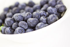 Blueberries in a bowl, closeup Stock Photography