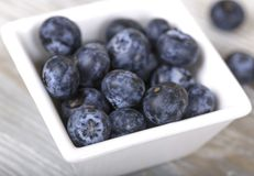 Blueberries in a bowl closeup. Blueberry in the Cup on a gray background, fresh berries, dietary food Stock Photography