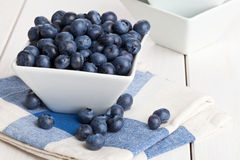 Blueberries in bowl Royalty Free Stock Photos