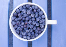 Blueberries in bowl Stock Photos