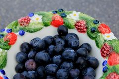 Blueberries in a bowl. An outdoor summer lunch with blueberries in a bowl Royalty Free Stock Photo