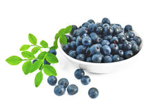 Blueberries in a bowl with a sheet Royalty Free Stock Photography