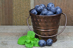 Blueberries. In a bucket with mint leaves Royalty Free Stock Photo
