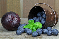 Blueberries. In a bucket with mint leaves Stock Images