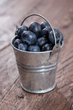 Blueberries in a bucket on wood Royalty Free Stock Photo