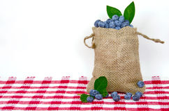 Blueberries in burlap bag Royalty Free Stock Image
