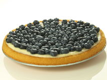 Blueberries cake Royalty Free Stock Photo