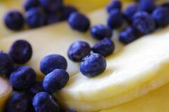 Blueberries on Cheese Slices royalty free stock image