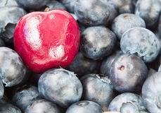Blueberries and cherry Royalty Free Stock Photography