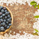 Blueberries in a clay bowl royalty free stock photos