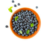 Blueberries in a clay bowl Royalty Free Stock Image