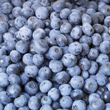 Blueberries close-up background Stock Images