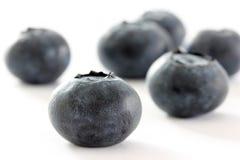 Blueberries Closeup. Extreme Closeup of Blueberries  on White Royalty Free Stock Photos