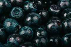 Blueberries collected manually. Natural background. Shallow dept Stock Image
