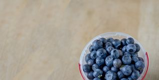 Blueberries in a container with copy space royalty free stock photo