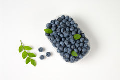Blueberries in container Royalty Free Stock Image
