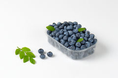 Blueberries in container Royalty Free Stock Photo