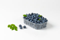 Blueberries in container Royalty Free Stock Photos