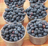 Blueberries in containers on tabletop at Farmer's Market Stock Photo