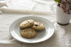 Blueberries cookies on a white plate Stock Images
