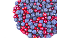 Blueberries and cowberries cranberry Royalty Free Stock Photography