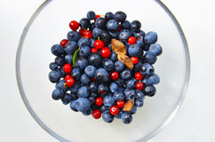 Blueberries and cranberries. Stock Images