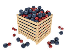 Blueberries and cranberries in a wooden box Royalty Free Stock Photo
