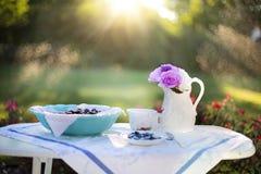 Blueberries, Cream, Dessert Royalty Free Stock Image