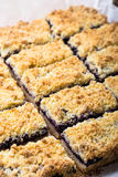 Blueberries crumble bars stock photography